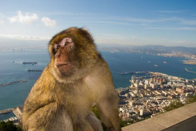 Excursion to Gibraltar