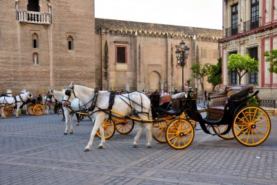 Horse-drawn carriage Seville tour