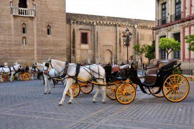 Tour en coche de caballos en Sevilla