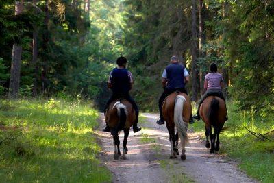 horseback riding in Seville